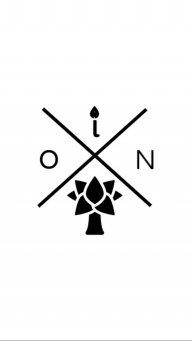 Ion_dama