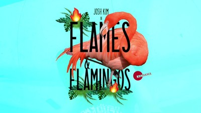 FLAMES & FLAMINGOS - Josh Kim POV Edit - Kendama USA